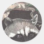 Racoon Round Sticker