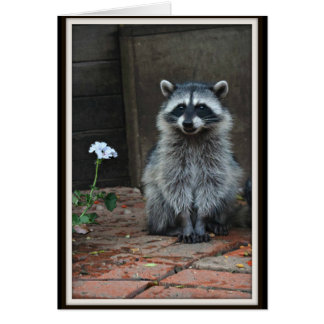 Racoon with White Flower Card