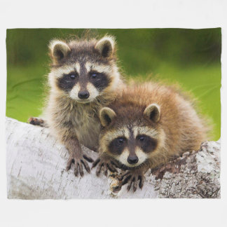 Racoons Fleece Blanket