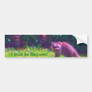 Racoons in the BC park Bumper Sticker
