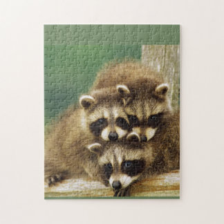 Racoons Unite Jigsaw Puzzle