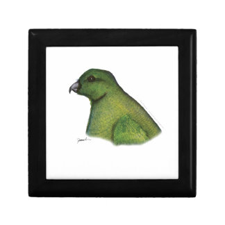 racquet tailed parrot, tony fernandes gift box
