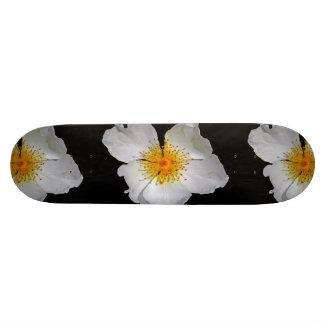 Radiance Delicate White Blossom 20.6 Cm Skateboard Deck