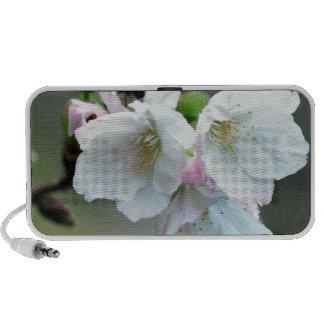 Radiant cherry blossom mp3 speakers