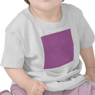 Radiant orchid hex code B163A3 T-shirt