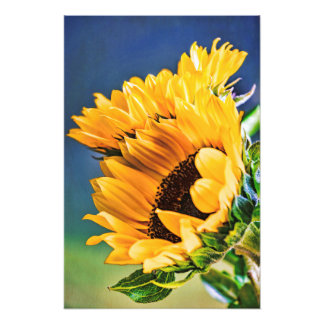 Radiant Sunflowers Photo Print