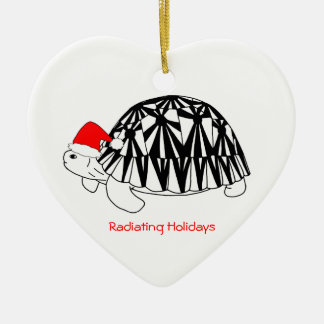 Radiated Tortoise Ornament