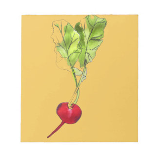 Radish vegetable watercolour illustration art notepad