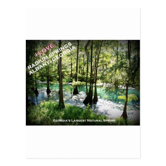 RADIUM SPRINGS - Albany, Georgia Postcard