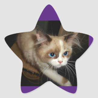 RaenaBelle Reaches Out Star Sticker