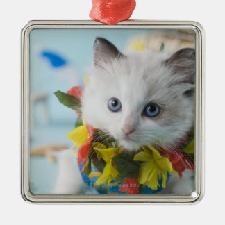 Rag Doll Kitten and Summer Vacation Christmas Ornament