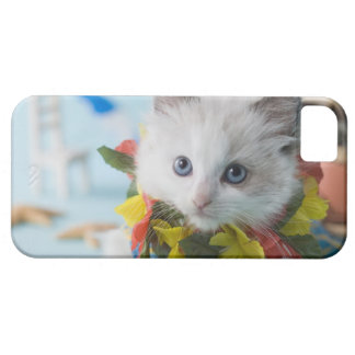 Rag Doll Kitten and Summer Vacation iPhone 5 Cover