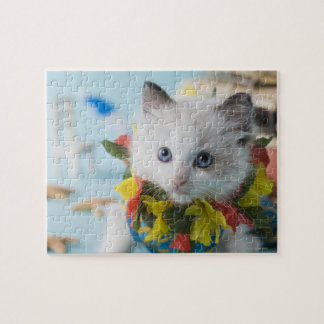 Rag Doll Kitten and Summer Vacation Jigsaw Puzzle