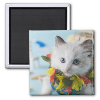 Rag Doll Kitten and Summer Vacation Square Magnet