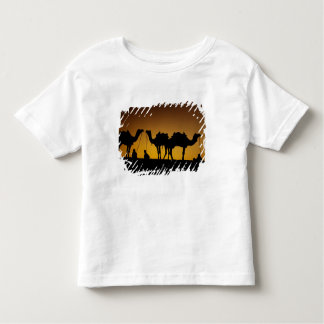 Ragasthan, India, Indian sub-continent, Young Toddler T-Shirt