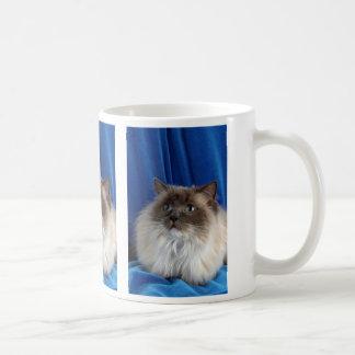 Ragdoll, blue point coffee mug