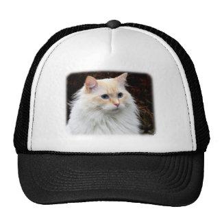 Ragdoll Cat 9Y448D-019 Trucker Hat