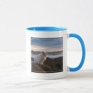 Ragdoll Cat At The Beach Mug