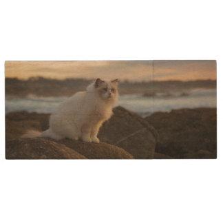 Ragdoll Cat At The Beach Wood USB 2.0 Flash Drive