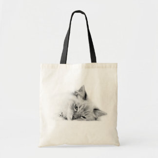 Ragdoll cat bag
