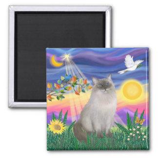 Ragdoll Cat (Blue Point) - Twilight Magnet