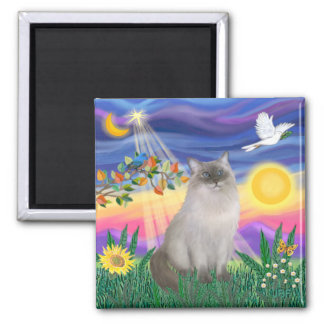 Ragdoll Cat (Blue Point) - Twilight Square Magnet