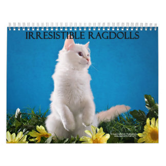 Ragdoll Cat Calendar