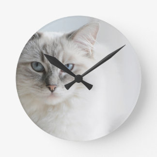 ragdoll cat clock