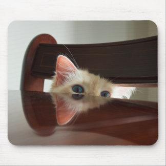 Ragdoll cat mouse mat