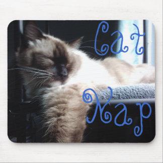 Ragdoll Cat Napping Mouse Pad