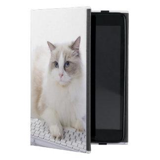 Ragdoll cat on computer keyboard iPad mini case