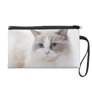 Ragdoll cat on computer keyboard wristlet
