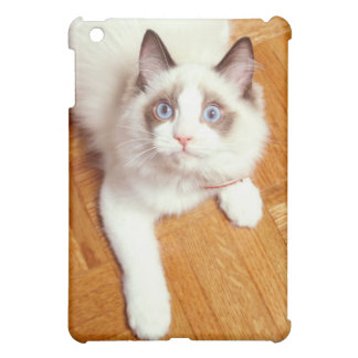 Ragdoll cat on floor, elevated view iPad mini cases