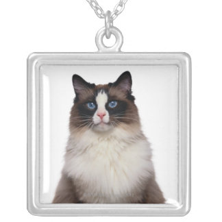 Ragdoll Cat Silver Plated Necklace