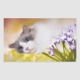 Ragdoll Cat Stickers