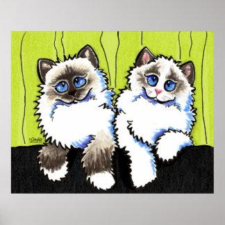 Ragdoll Cats Pair of Dolls Off-Leash Art™ Poster
