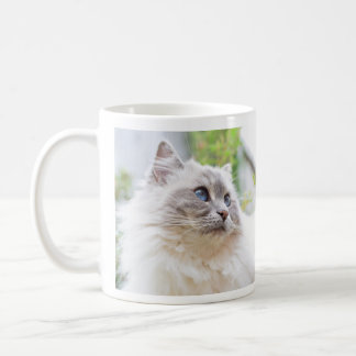 Ragdoll Cute Cat Mug