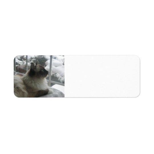 Ragdoll Himalayan Cat Kitty Snow Christmas Scene Return Address Label