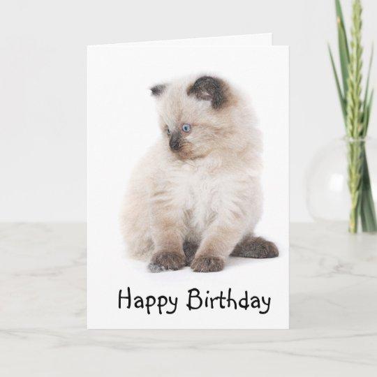 Ragdoll Kitten Birthday Card Zazzle