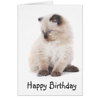 Ragdoll kitten birthday card