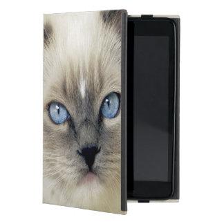 Ragdoll kitten case for iPad mini