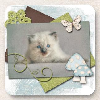 Ragdoll kitten coasters