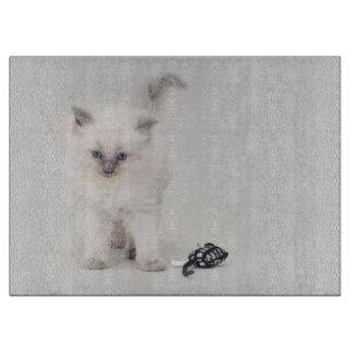Ragdoll kitten cutting board