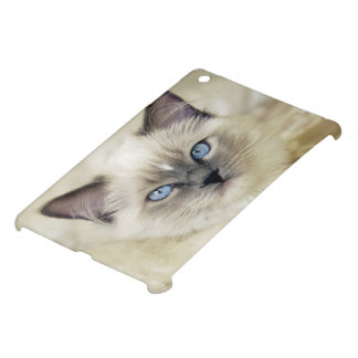 Ragdoll kitten iPad mini cases