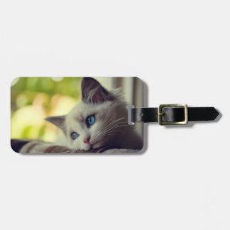 Ragdoll Kitten Luggage Tag