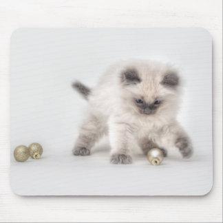 Ragdoll Kitten mousepad