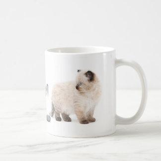 Ragdoll kitten sketch mug