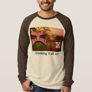raglan shirt choice of colors