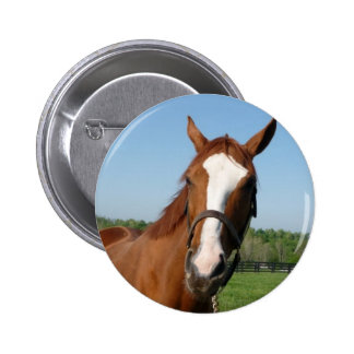Rags to Riches headshot 6 Cm Round Badge