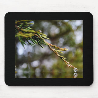 Rain Drop from Tree Mouse Pad